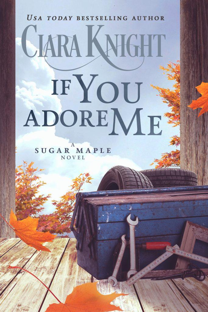 If You Adore Me Book