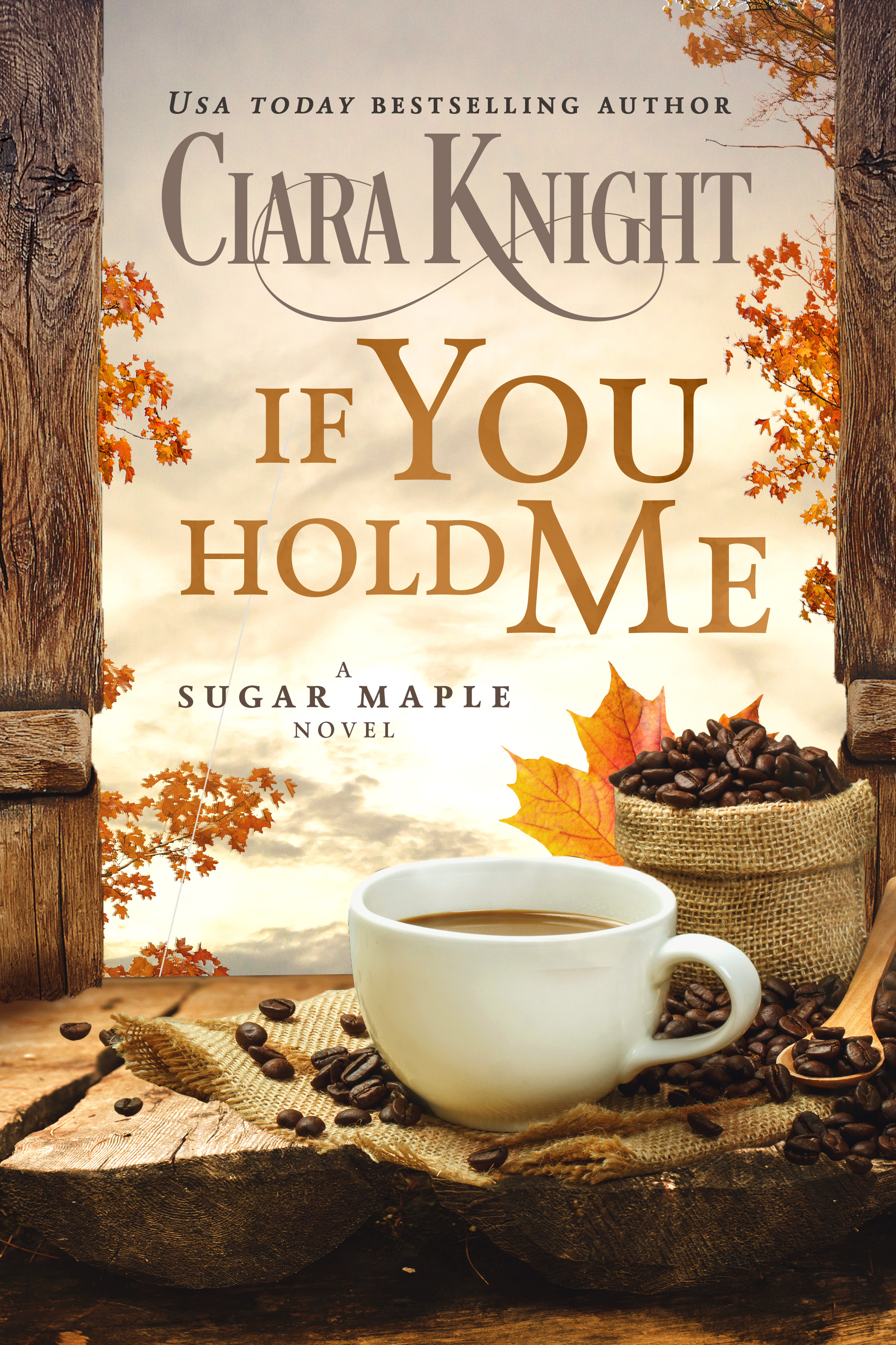 If You Hold Me Book
